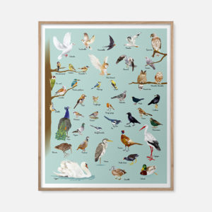 Les oiseaux des parcs et jardins